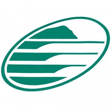 Cleanline Surf Big Rock Oval Sticker - Green