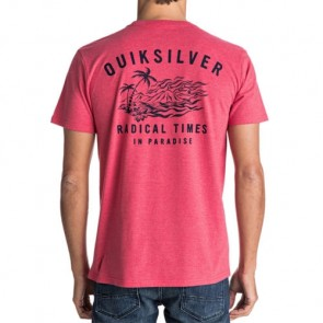 Quiksilver Flaming Dream T-Shirt - Cardinal Heather
