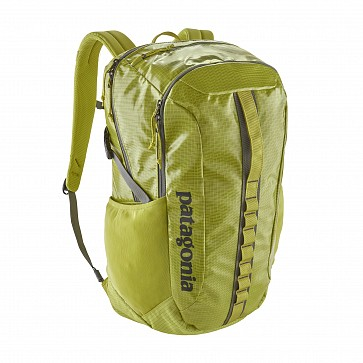 Patagonia Black Hole 30L Backpack - Folios Green
