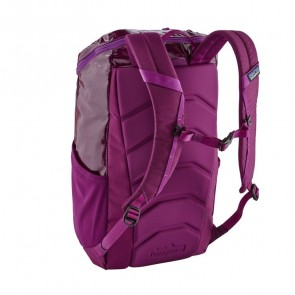 Patagonia Black Hole 25L Backpack - Geode Purple