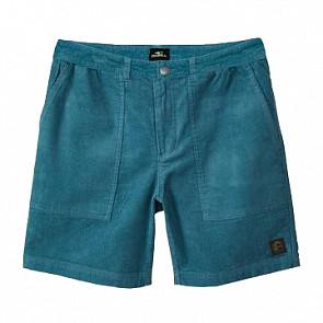 O'Neill Waler Shorts - Ocean - front